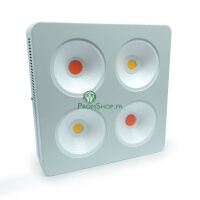 Agrolight led COB full spectrum + CREE 800w