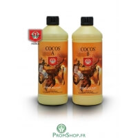 Composant cocos A + B