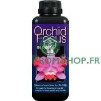 Orchid Focus bloom 100ml
