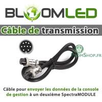 Câble de transmission de données