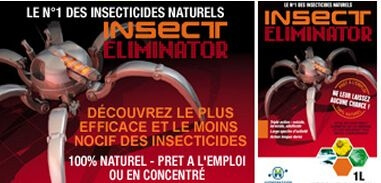 Insect Eliminator