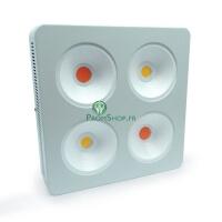 Agrolight  led COB full spectrum + CREE 800w