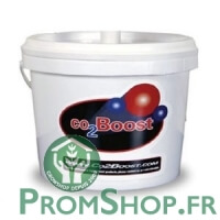 Recharge pour Co2 Boost